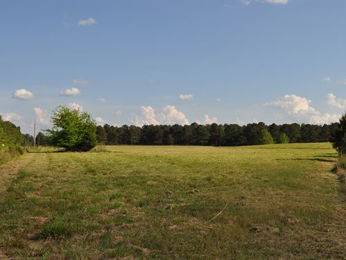 War Hill Farm - 95.17 Acres : Washington : Wilkes County : Georgia