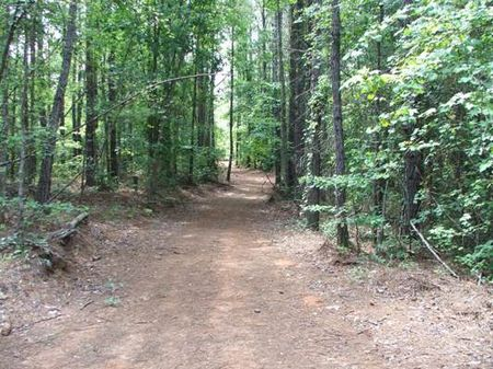 80 Acres Near Centerville : Centerville : Bibb County : Alabama