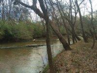 Reedy River Farm