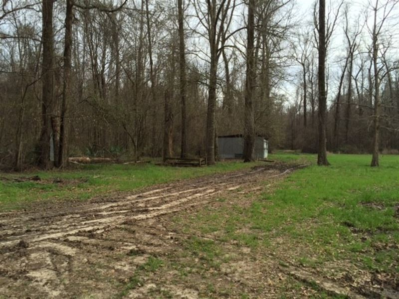 2 5 ac hunting fishing camp farm for sale for Fishing camps for sale in louisiana