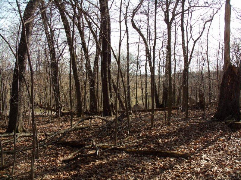 Benson Rd - 5 Acres : Carroll : Fairfield County : Ohio