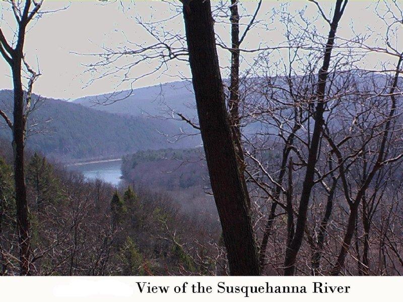 156.3 Acres For Development : Falls : Wyoming County : Pennsylvania