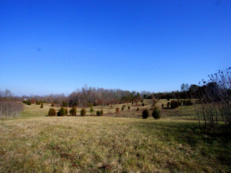 13.89 Acres Of Open Land : Sandy Hook : Goochland County : Virginia