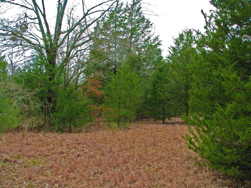 Sawyer Hills Tract 2 : Sawyer : Choctaw County : Oklahoma