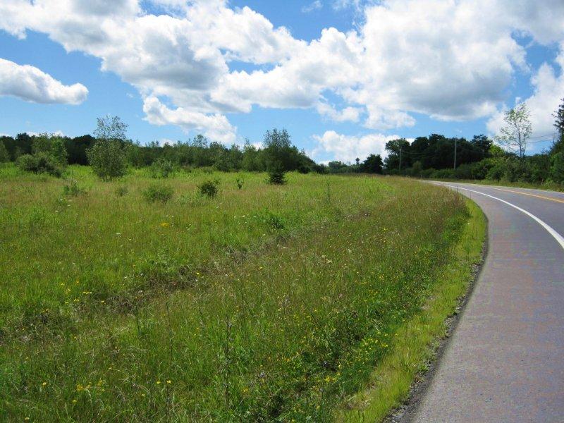Building Lot Near Ithaca : Hector : Schuyler County : New York