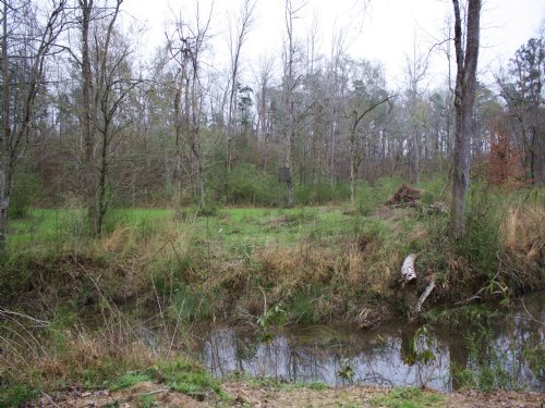 80 Acres In Brookhaven : Brookhaven : Lincoln County : Mississippi