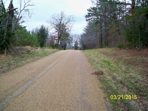 Attention Hunters And Developers : Coffeeville : Yalobusha County : Mississippi