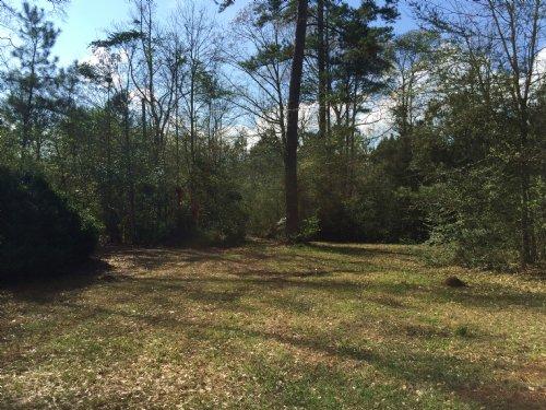 Multi Use Tract : Magnolia : Amite County : Mississippi