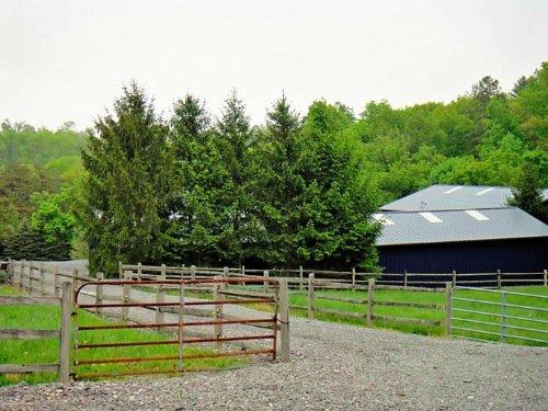 5+/- Acre Exquisite Equestrian : Bloomsburg : Columbia County : Pennsylvania