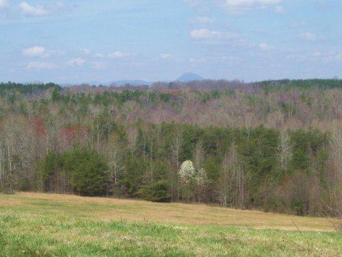 Farmland / Residential : Cornelia : Habersham County : Georgia