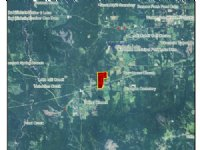 50 Acres Of Land : Citronelle : Mobile County : Alabama