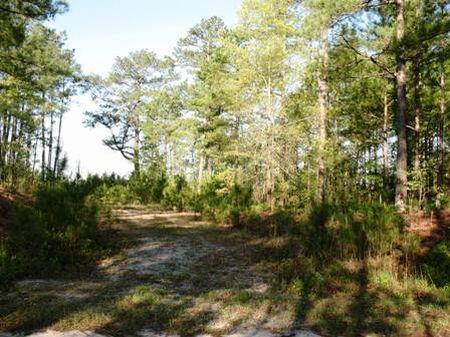 Tract #8933 : Kershaw : Kershaw County : South Carolina