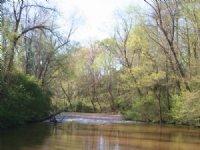 Potato Creek Timberlands