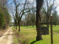75 Ac River Front Estate