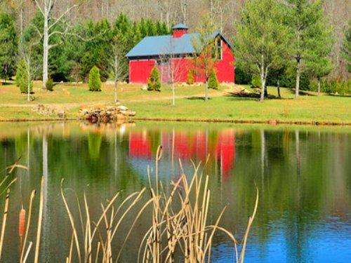 Betty's Creek Farm : Rabun Gap : Rabun County : Georgia