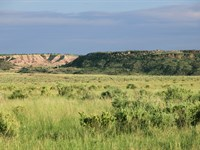 No Az Wilderness Ranch $193 Month : Saint Johns : Apache County : Arizona