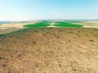 1379.00 Acres Cattle Farm Land