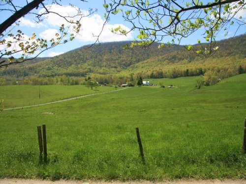 Acreage In Blue Ridge Mountains : Elk Creek : Grayson County : Virginia