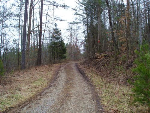 Investment Opportunity : Vonore : Monroe County : Tennessee
