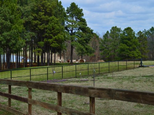 200 Acre Ranch / 30411 : Avery : Red River County : Texas