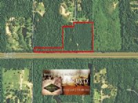 27 Acres Hunting Land, Recreation