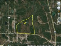 69 Acres Great Timber Or Hunting