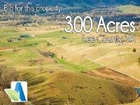 300 Acre Virginia Cattle Farm