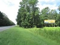Cantey Bay 165 : Columbia : Clarendon County : South Carolina