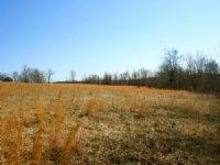 59 Acres Pasture Or Tillable