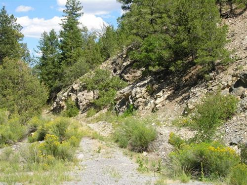235694 - Mountain Property Near Sa : Wellsville : Chaffee County : Colorado