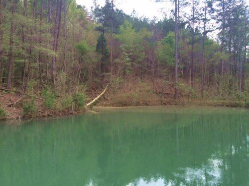 98.648 +/- Acres Old Cabin W/ Pond : Ranger : Gordon County : Georgia