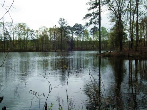 Hollingworth : Kosciusko : Attala County : Mississippi