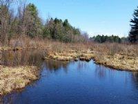 River Front Land 19 Acres