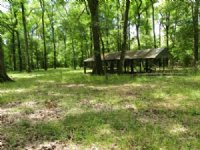 Great Timber&hunting Property