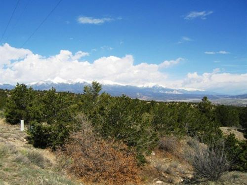 233990 - 2 Of The Nicest, Heavily T : Salida : Chaffee County : Colorado