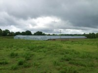 4 +/- Acres With 3 Poultry Houses