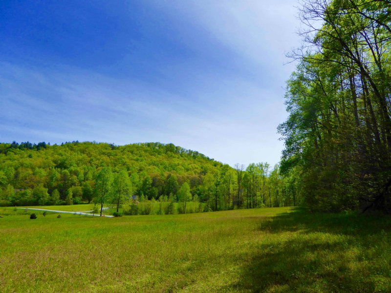 Gorgeous North Rabun 11.72 Acres : Dillard : Rabun County : Georgia