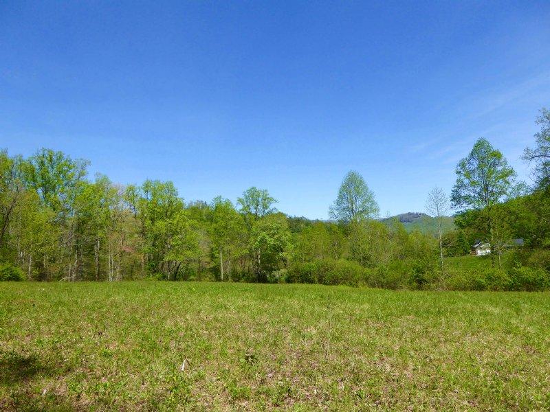 Mountain Views, Open Meadow Land : Dillard : Rabun County : Georgia