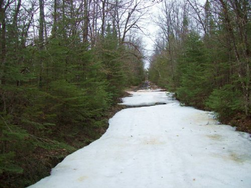16 Acre Hunting Parcel : Pittsfield : Somerset County : Maine