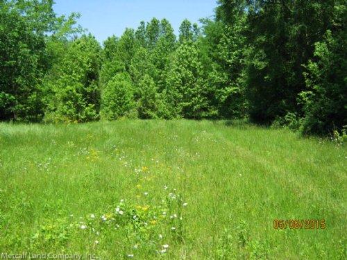 Blaney Road Homesite And Acreage : Chester : South Carolina