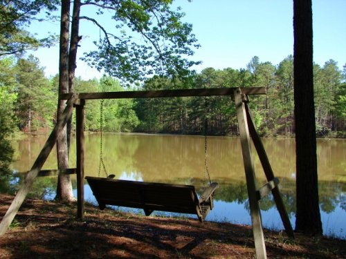Peaceful Pond- Potential Homesites : Eclectic : Elmore County : Alabama