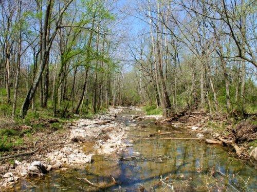 5.1 Acres Cedar Ridge Ranch. Terms : Beulah : Phelps County : Missouri
