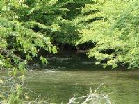 Log Cabin On Premier Trout Stream