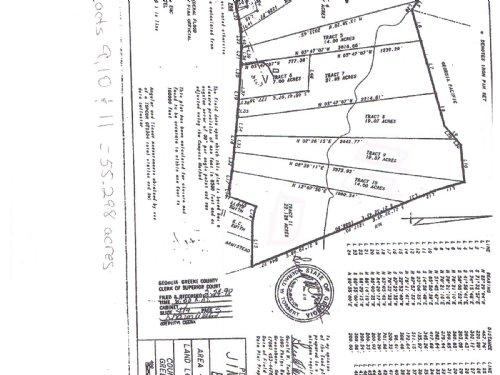 55.2 Ac Hunting / Recreation Tract : Greensboro : Greene County : Georgia