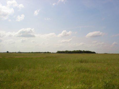 35 Acre Homesite Development : Sumner : Lamar County : Texas