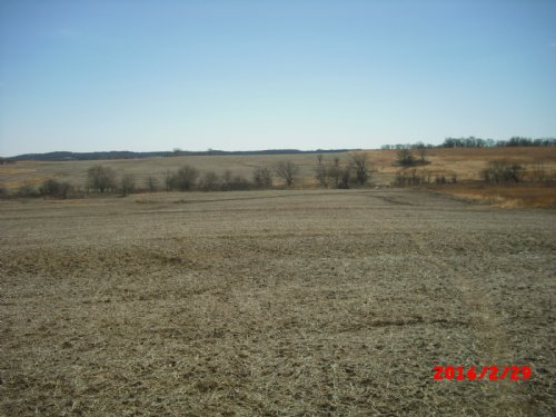 76.5 Acres : Richmond : Ray County : Missouri
