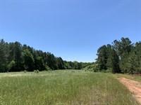 Wolf Branch Tract : Lexington : Oglethorpe County : Georgia
