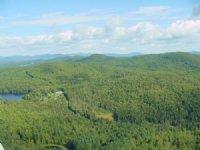 Keeler Brook Forest