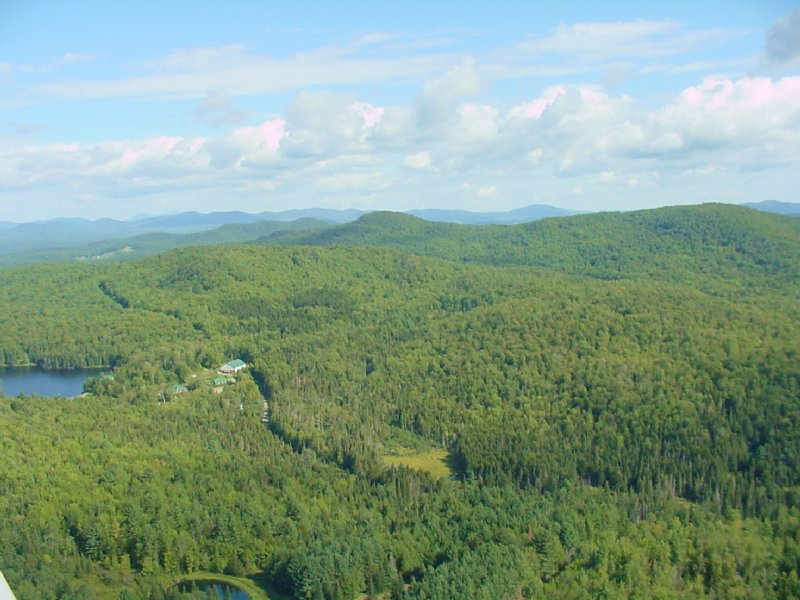 Keeler Brook Forest : Wolcott : Lamoille County : Vermont