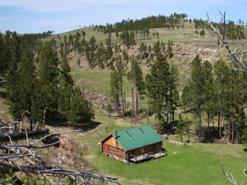Dead Horse Flats : Custer : South Dakota